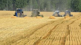 TMO'ya ilave 500 bin ton buğday ithalat yetkisi