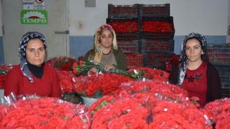 Çiçekçiler 2020'de 125 milyon dolar ihracat hedefliyor