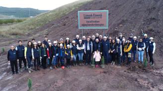 Limak'ın 'Yeşil Dönüşüm Ormanları' Bursa'da kök salacak