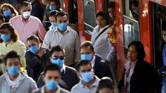 Hindistan'da domuz gribi salgını: 105 ölü