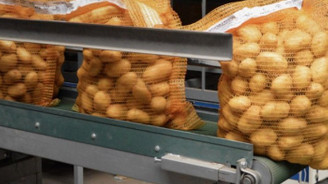 Patates ithalatında vergi kalktı