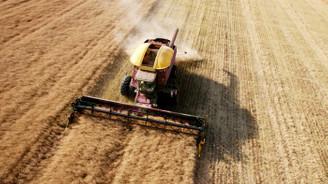 Tarımda üretici fiyat artışı sürüyor