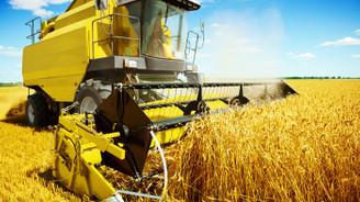 Kamal Huseynov: Tahılda demiryolu lojistiğinin önemi artıyor