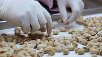 Antep fıstığının Çin'e ihracatına izin verildi