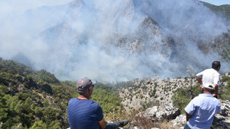 Üç ilde orman yangınları, bakandan açıklama