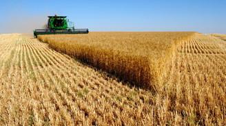 Tarım ÜFE 2019 Aralık'ta yıllık yüzde 16,07 arttı