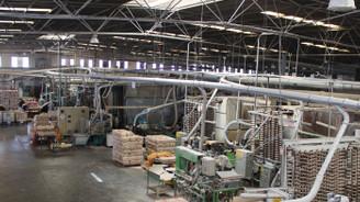 Teknik Masura, 2020'de de ihracatını artıracak