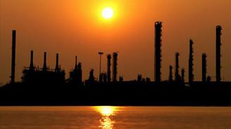 Adana'da petrokimya fabrikası kurulacak