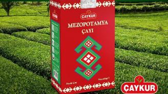 ÇAYKUR, Mezopotamya Çayını tüketicilerin beğenisine sundu