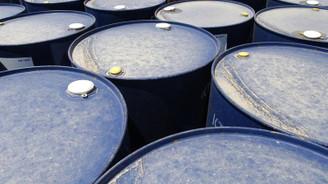 Trump-Putin görüşmesi petrol fiyatlarını hafif yükseltti