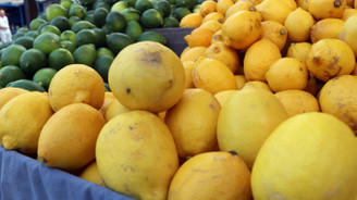 10 bin ton limon ihracatına izin