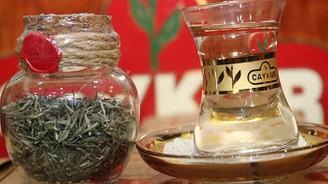 ÇAYKUR, beyaz çayın kilosunu 575 liradan alacak