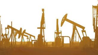 OPEC'in ham petrol üretimi mayısta azaldı