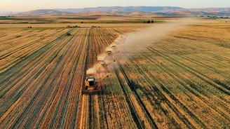 Türkiye'nin en büyük çiftliğinde hasat bitmeden ekim başladı