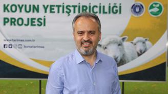 Bursa Büyükşehir'den hayvancılığa destek
