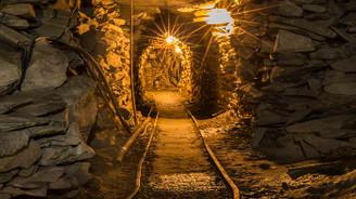 Özaltın, Salınbaş Projesi ve Zenit Madencilik ortaklığının yüzde 53'ünü satın alacak