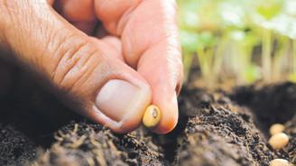 Türk tohumları 80 ülkeye ihraç ediliyor