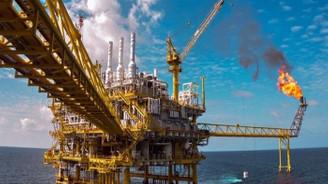 Türk Petrol Kanunu Uygulama Yönetmeliğinde değişiklik