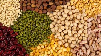 Hububat Türkiye'nin en fazla ihracat yapan tarım sektörü oldu
