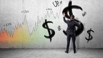 Dolar/TL, 3.54 seviyesini aştı