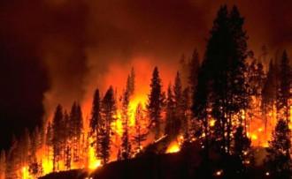Meteoroloji'den orman yangını uyarısı