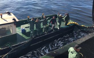 Türk balıkçılardan Moritanya çıkarması