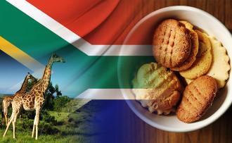 Güney Afrikalı firma bisküvi satın almak istiyor