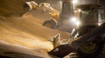 Tarımsal emtia 2019'da güç kazanacak!