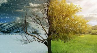 Ekonomide ilk yarı kış, ikinci yarı bahar