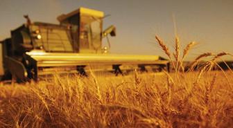 Tarımda desteğe yeni düzenleme hazırlığı