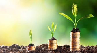 Bankalar yeşil, yönetimler fosil