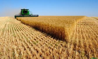 TZOB'dan çiftçiye ecrimisil uyarısı