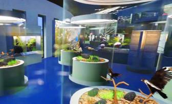 Çukurovanın biyolojik zenginliği müzede sergilenecek