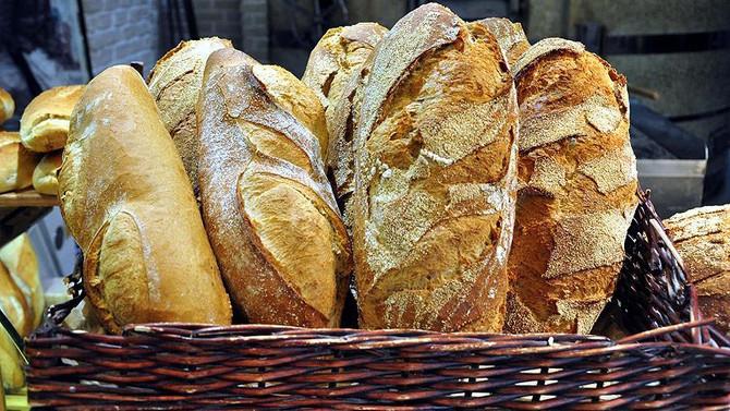 GDO'lu ekmek iddiasına soruşturma