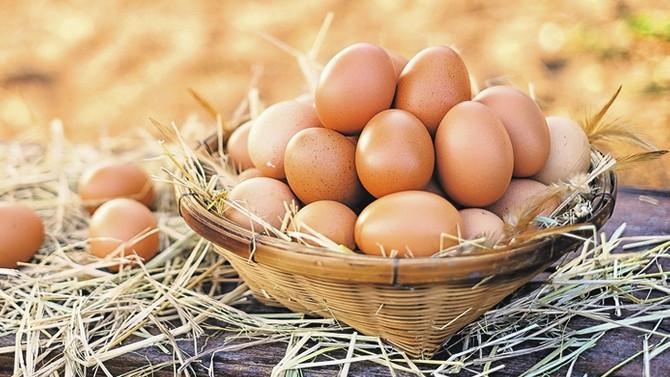 Irak yumurtanın vergisini artırdı, ihracatçı tedirgin