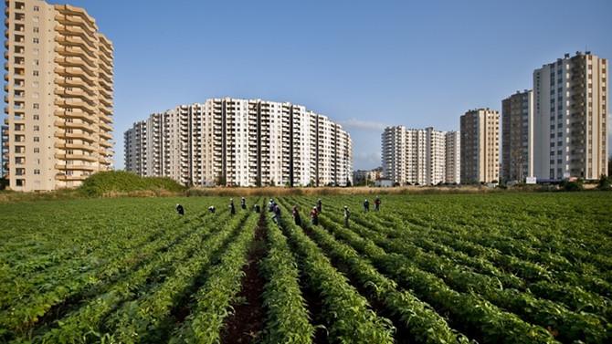 Tarım küçülen tek sektör oldu