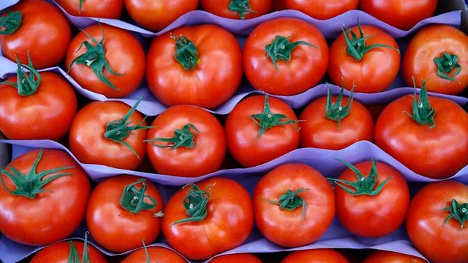Suriye'ye domates ihracatı yüzde 4431 arttı