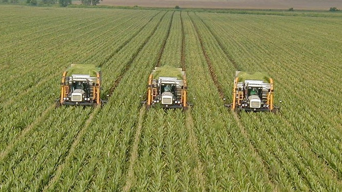 Tarımsal üretimde düşük faizli kredi