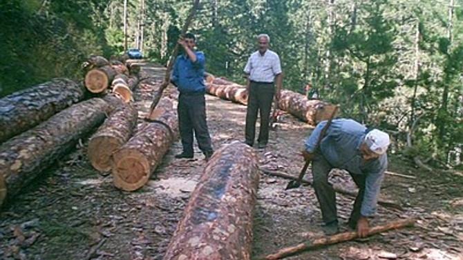Orman işçisine yüzde 4+4 zam