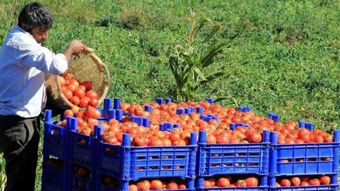 Rusya'dan Türk gıda ürünlerine sıkı denetim