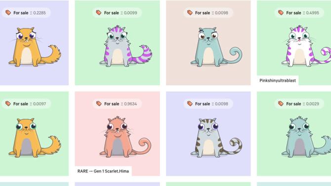 Dijital Kediler, 1 milyon doları aştı