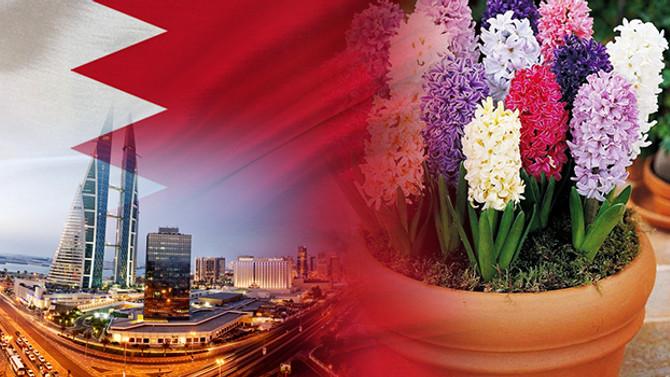 Bahreynli botanik firması toprak saksılar ithal edecek
