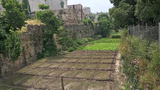 Tarihi yarımadada bir kültür vadisi: Zeytinburnu
