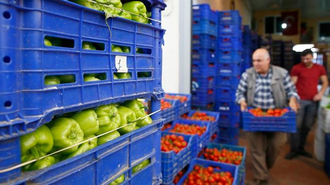 Körfez ülkelerine yaş sebze ve meyve ihracatında artış