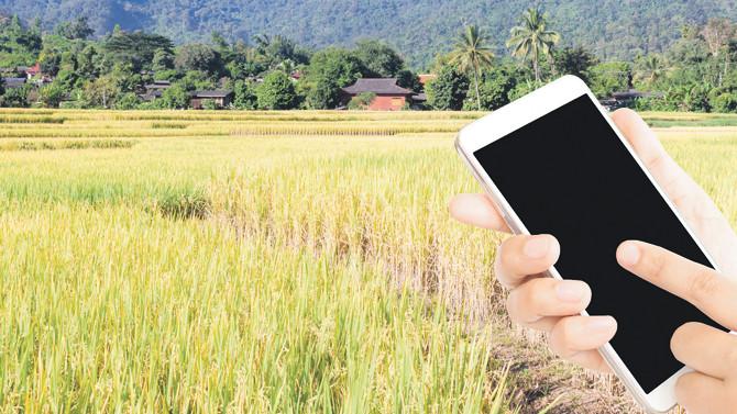 Türkiye'nin tarlaları akıllı telefonlarla yönetilecek