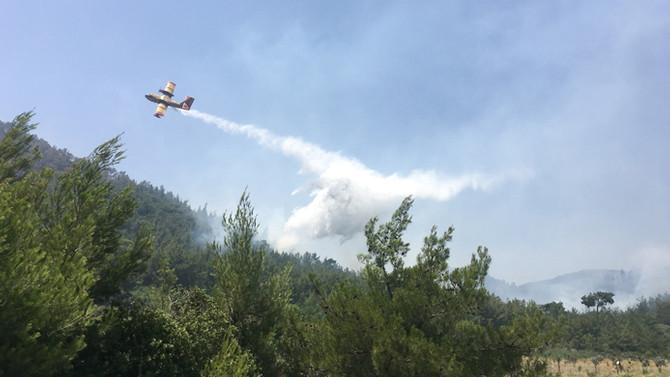 Kütahya'daki orman yangınları kontrol altına alındı