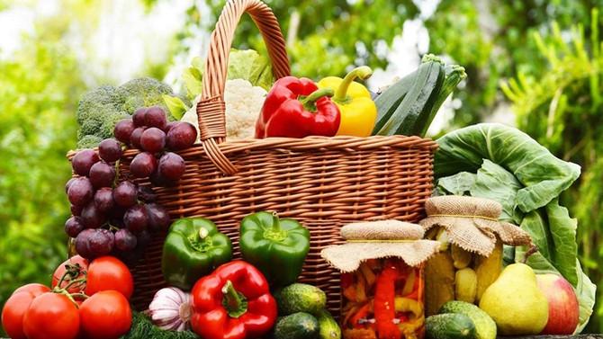 Organik tarım, dünya nüfusunu besleyebilir mi?