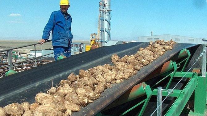 Şeker fabrikalarını modernize etmeliyiz