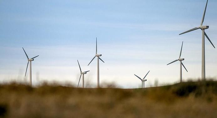 Rüzgar ihalesinden çıkarılacak dersler