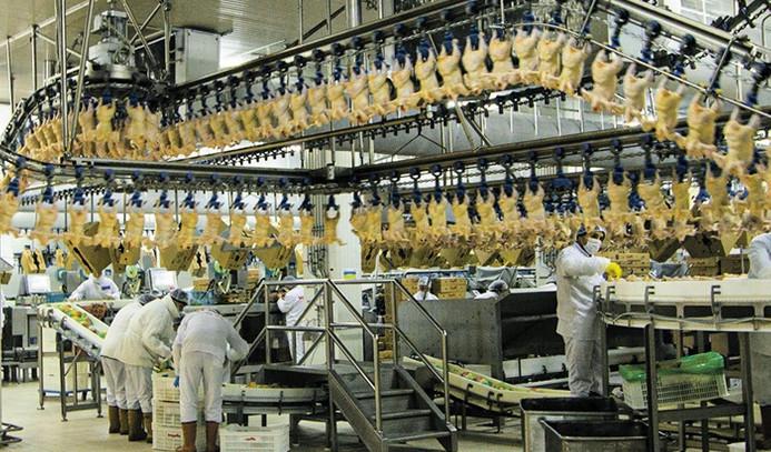 Irak'la tavuk krizi kapıda